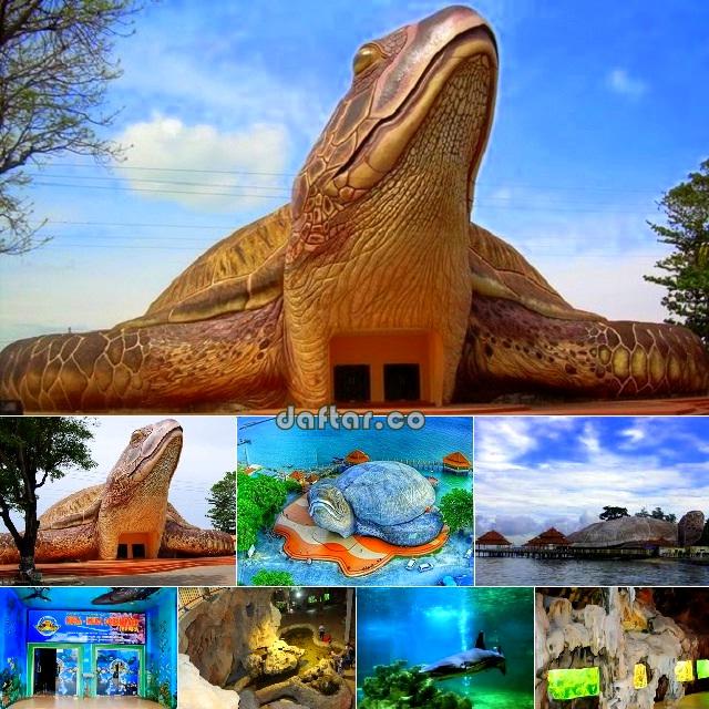Kura-kura Ocean Park Jepara